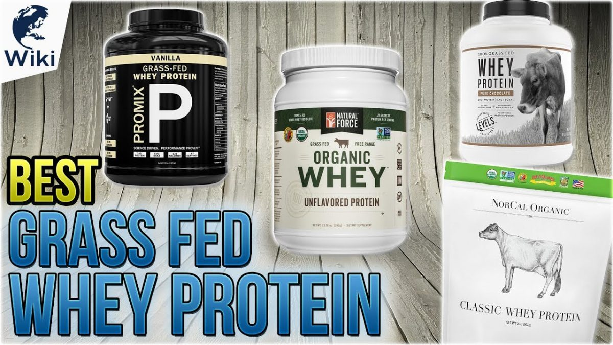 Organic Whey Protein Vs Regular Whey Protein